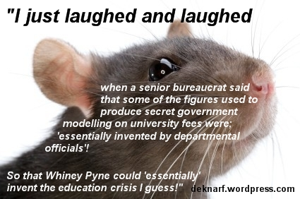 Education Crisis Rat