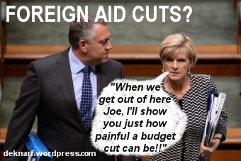 Foreign Aid Cuts