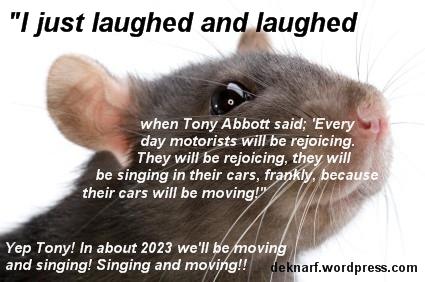 Motorway Rat