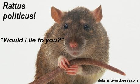 Rattus Politicus Lying