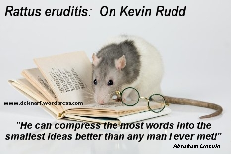 Rudd Rat Eruditis