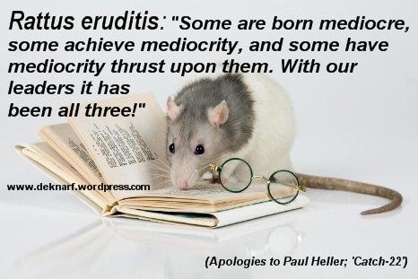 Erudite Mediocre Rat