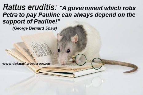 Eruditis Support