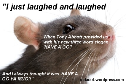 Have A Go Rat