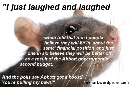 Poll Boost Rat