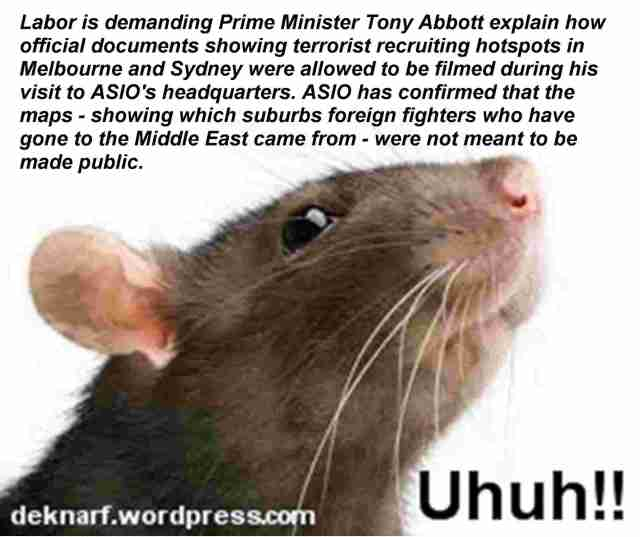 ASIO Public Rat