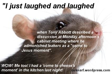Cheeses Rat