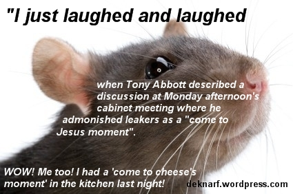 Cheeses Rat