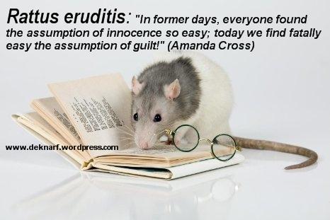 Erudite Guilt Rat