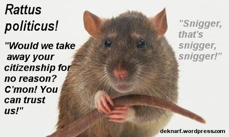 Politicus Rat Citizenship