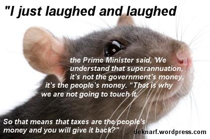 Quandary Rat
