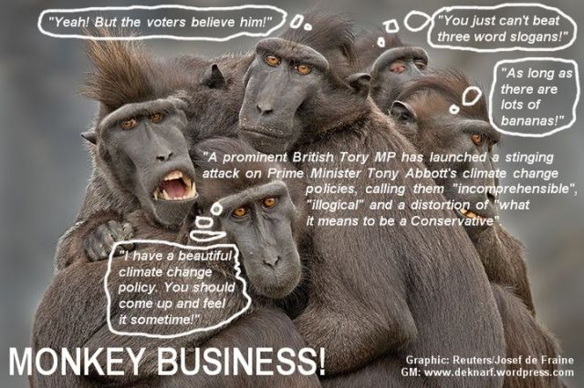 Climate Abbott Monkeys