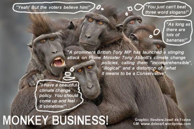 Climate Abbott Monkeys