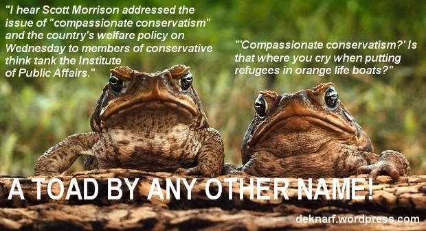 Compassionate Coverservatism Morrison