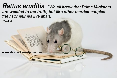 Eruditis Rat Truth