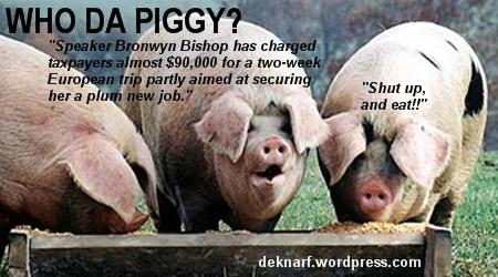 Piggy Bronwyn