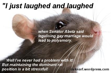 Polyamory Rat