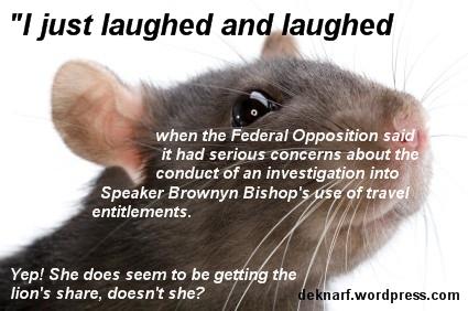 Rort Worry Rat