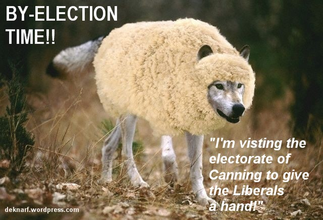 Byelection Wolf