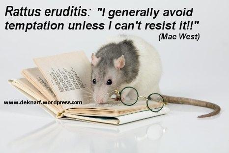 Erudite Temptation Rat