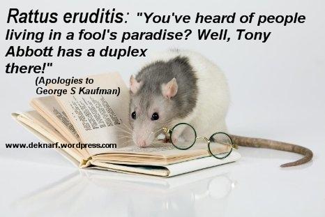 Eruditis Fools Paradise