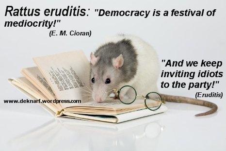 Eruditis Mediocrity Rat