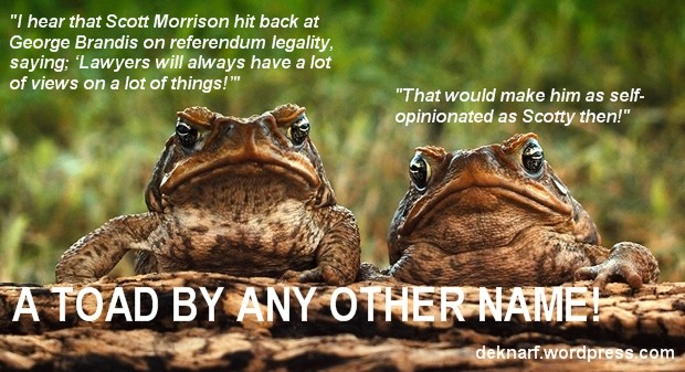 Opinionated Toads