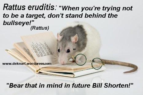 Reuditis Target Rat