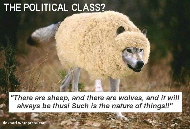 The Political Class