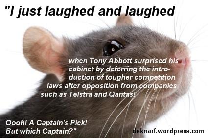 Competition Rat
