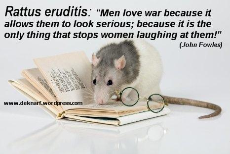 Eruditis Warmonger Rat