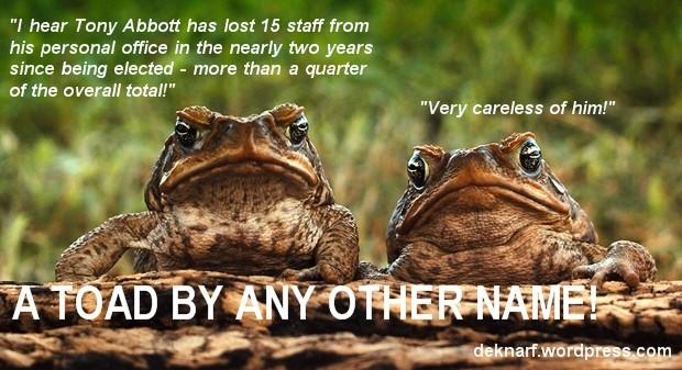 Lost Staff Toads