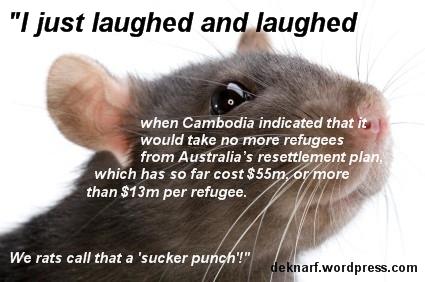 Refugee Rat