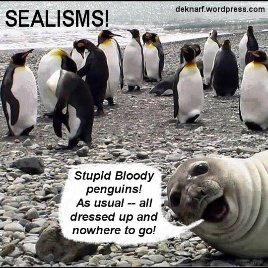 Smartarse Seal