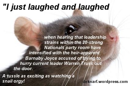 Truss Barnaby Rat