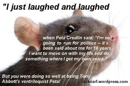 Ventriloquist Credlin Rat