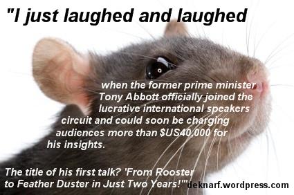 Abbott Rooster Rat
