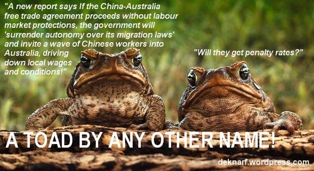 CHAFTA Toads