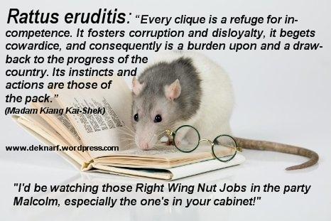 Disloyalty Eruditis Rat