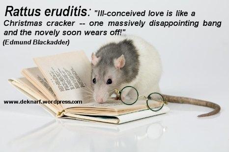 Eruditis Love Rat