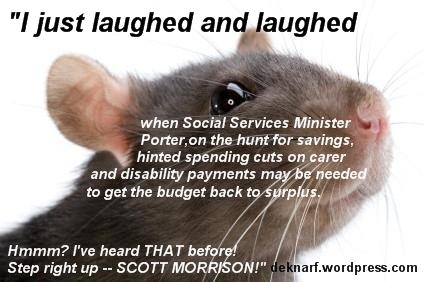 Same Story Rat