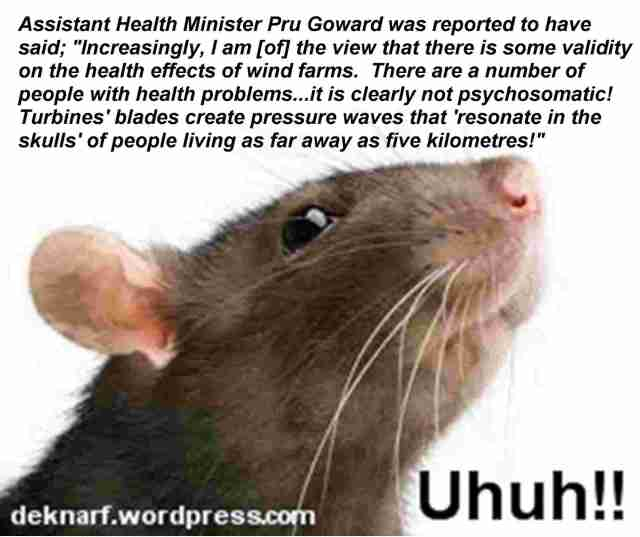 Winfarm Goward Uhuh Rat