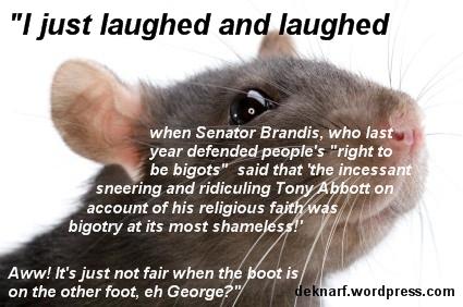 Brandis Bigot Rat