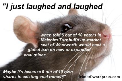 Coal Mining Rat