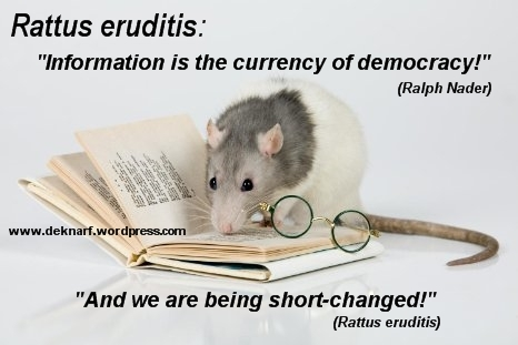 Eruditis Democracy Rat