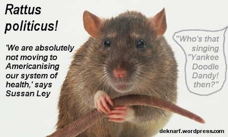 Medicare Politicus Rat