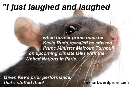 Rudd Advice Rat