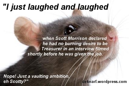 Seething Morrison Rat