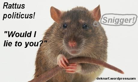 Political Liar Rat May