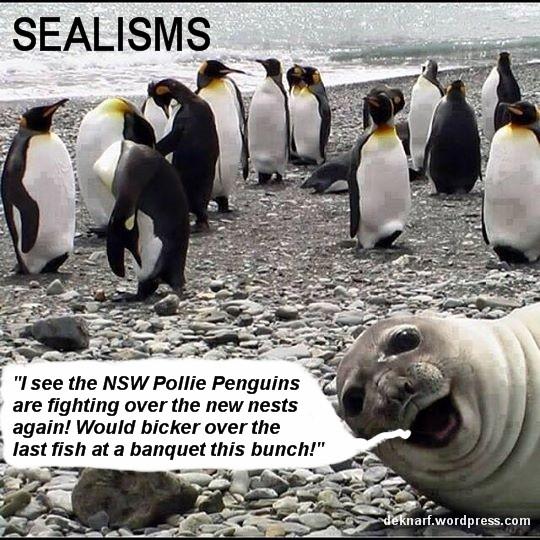 Pollie Seats Sealism